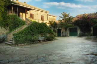 E' nato il Blog dell'Azienda Agricola Blandini!